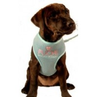 Waffle Dog Harness in Baby Blue
